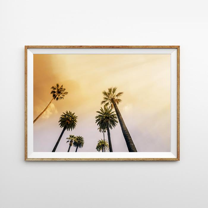 画像1: 夕焼けの空とパームツリー  ポスター (1)